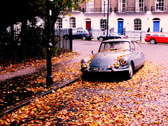 Autumn Citroën DS (@fotochap) Tags: uk autumn england london fall leaves car citroen ds citroën