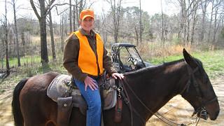 Alabama Quail Hunt - Davis Quail 13