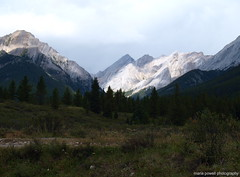 at the ink pots (ktelqueen) Tags: mountains nature rockies olympus alberta banff johnstoncanyon inkpots ktelqueen