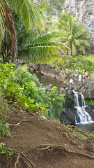 DSC09272 (toddity) Tags: hawaii maui pools waterfalls roadtohana oheogulch