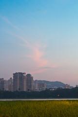 Sky is still a long way to go (kissoflif3) Tags: sky lake nature grass clouds buildings day bluesky clear bombay mumbai iitb powai hiranandani iitbombay powailake hiranandanipowai