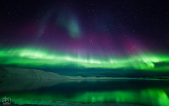 Extreme Aurora Borealis (Arnar Bergur) Tags: winter mountain snow cold reflection green water stars landscape iceland colorful purple aurora northernlights auroraborealis phenomenon arnarbergur