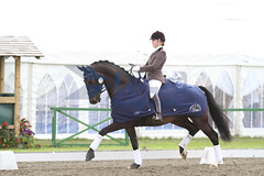 IMG_0780 (RPG PHOTOGRAPHY) Tags: final awards hickstead 5y 200712
