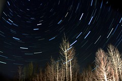 startrail chemin du petit canada 14 janvier 2013 (SteveGauthier) Tags: longexposure sky tree night star trail