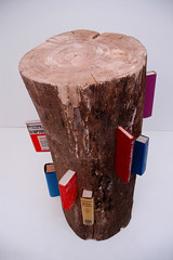 Untitled     Log, Book.     255 X 127 X 127 (cm)  100 X 50 X 50 (inch)