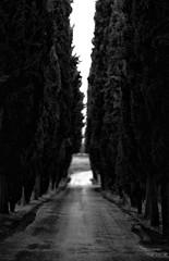 Crete Senesi (Giovanni Tabb) Tags: panorama sun rain clouds canon landscape 50mm nuvole sigma tuscany crete siena toscana sole pioggia 70200 1740 paesaggio cretesenesi 135l 24l senesi canon5dmark2