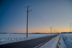 952 (ManticorePhoto) Tags: voyage road ca travel winter snow canada cold travelling rural beige aperture travels nikon edmonton telephone hiver explorer country ab canadian traveller explore route alberta nik voyager luc campagne froid chemin franco canadien voyages poteaux therrien appleaperture voyageur explored quebec topazlabs niksoftware albertain explorez d7000 quebecois aperture3 luctherrien manticore66669 explor radarplz voyage
