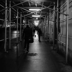 Lone (JoelZimmer) Tags: blackandwhite newyork manhattan streetphotography financialdistrict 24mmf28 nikond7000