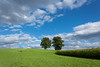 Landscapes with two trees (richter christian) Tags: blue summer sky plants cloud sunlight plant tree green nature field grass weather season landscape outdoors landscapes spring solitude loneliness farm horizon meadow panoramic dandelion growth pasture simplicity land environment remote agriculture plain idyllic climate scenics lonetree freshness stratosphere lonelytree limetree solitarytree landscaped vitality ruralscene nonurbanscene lushfoliage horizonoverland