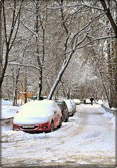 5 february/Moscow (Serge 585) Tags: city trees winter snow cars ice frost natural moscow noel neve neige february fro freddo froid      me2youphotographylevel1