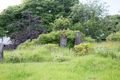 Torshavn Cemetery (kaszeta) Tags: faroeislands trshavn streymoy fo
