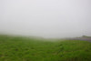 low visibility (heartinhawaii) Tags: maui haleakala road roadtosummit lavarocks fog foggy mist misty cloudy upcountry mauivolcano hawaii mauiinnovember shotfromcar canons90