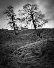 Guardians (ChrisDale) Tags: barn blackandwhite chrisdale chrismdale cloud dark decayed dilapidated grass grassy gray grey hills hilly landscape mounds northyorkshire northyorkshiredalesnationalpark ruinedbarn semerwater stonebarn trees twotrees yorkshire yorkshiredales zigzag