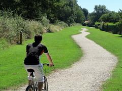 Zig zag.... (LILI 296 ...) Tags: canonpowershotg7x vtt bike vlo chemin nature homme t midi hautegaronne france arbre zigzag