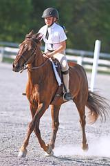 IMG_2599 (SJH Foto) Tags: horse show hunter class rider ribbon award teen teenagers tweens girls