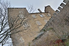 DSC_0162 (FyP-55) Tags: chateau castle medieval berzélechâtel france