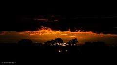 DSC_0235 (timmie_winch) Tags: nikon nikond3000 d3000 august august2016 2016 sun sunset sunsetsuffolk sunsetoversuffolkcountryside sunsetovercornfields sunsetovercornfield silhouette 18105mm 18105vr nikon18105mmvrlens shadows golden goldenhour goldenlight elliedunn ellie eleanordunn ells eleanor ellsdunn dunn landscape landscapephotography landscapephotographer naturephotographer naturephotography nature timwinchphotography tim timwinch winch debenham ip14 suffolk