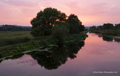 Canal Sunset, Devon (Daryl 1988) Tags: canal exeter devon eastdevon sunset colours beautiful sundown photography nikon d2xs uk landscape waterscape sky trees wow