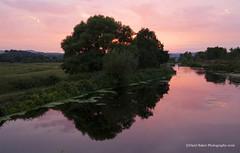 Canal Sunset, Devon (Daryl 1988) Tags: canal exeter devon eastdevon sunset colours beautiful sundown photography nikon d2xs uk landscape waterscape sky trees wow