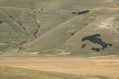 Castelluccio di Norcia, Umbria, Italia (B Plessi) Tags: umbria marche2016 italia castelluccio di norcia terremotto earthquake landscape paysage appenins montisibillini