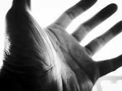 (takashi ogino) Tags: pentax q7 digital justpentax bw monochrome 01standardprime handsart hand