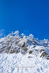 Harry_30833,,,,,,,,,,,,,,,,,,,,,,,Hehuan Mountain,Taroko National Park,Snow,Winter (HarryTaiwan) Tags:                       hehuanmountain tarokonationalpark snow winter mountain     harryhuang   taiwan nikon d800 hgf78354ms35hinetnet adobergb