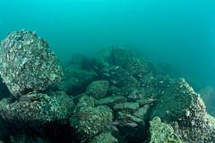 se3500_IMG_1073_ver2 (OKANO14) Tags: scuba diving hong kong
