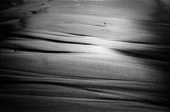 2016-09_F6-24_26 (jarek.matla) Tags: bw f6 ishootfilm istillshootfilm niechorze nikon blackandwhite iflordphoto ilfordfp4 ilfordfilm meta35 nikonf6 nikontop nikonworld pl