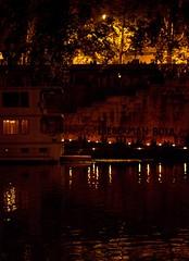 Protest (bro-mark) Tags: bridge italy rome roma history night river italia tevere banks waterfire eternal brazier barnabyevans