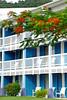 Blue shutters (Travnet.) Tags: saintmartin caribbean stmaarten sxm dutchcaribbean caribisch travnet dubbauphotograghy caribischnederland