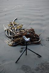 The Set-Up (Kevin_Barrett) Tags: camera beach 35mm washington nationalpark sam sony olympicpeninsula alpha rubybeach olympicnationalpark peninsula a700
