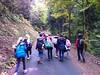 6e2 promenade sur le Mont Sainte Odile
