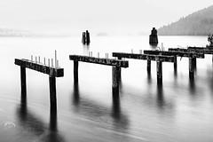 Umbrella Holder (Christopher J. Morley) Tags: park old bw white black wet water rain wednesday landscape pier nikon marine long exposure bc burnaby pilings barnet d600 alw achromatic