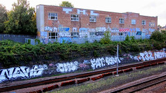 NEKAH V SEAL V FAT V FERM V TEMP32 V NEHS (Cooney-Hughes) Tags: streetart fat seal ferm nehs nekah temp32