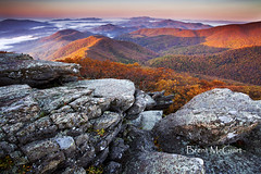 Pleasant Morn (Brent McGuirt Photography) Tags: blue autumn mountain cold color fall apple leaves fog virginia view cole orchard ridge mount area summit vista layers appalachian wilderness amherst pleasant buena