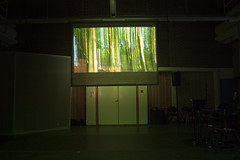 Trees on screen (apollocreative) Tags: