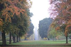 season of mists, 3 (lesbru) Tags: autumn trees kewgardens misty pagoda exterior d600