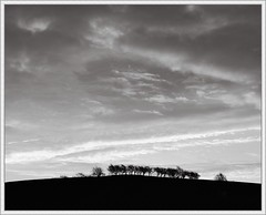 Shepherd's Warning (spodzone) Tags: morning autumn trees light sky blackandwhite sunlight art nature weather silhouette composite clouds manipulated sunrise lens landscape happy photography scotland flora warm emotion space curves seasonal earlymorning places appreciation equipment negativespace pentacon distance toned platinum contrasts tranquil stacked turbulence contentment lightanddark phenomena dumfriesandgalloway digikam newtonstewart tonemapped skyearth shapeandform cloudappreciation rawconversion pentacon50mm rawstudio enfuse luminancehdr darktable