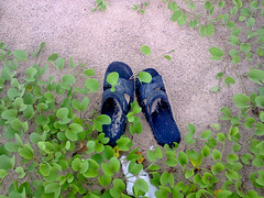 photo0481 (Bhavesh Soren) Tags: nokia asha sole untouched 305 chappal chandipur