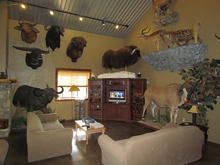 Texas Whitetail Hunting Lodge - Kerrville 4