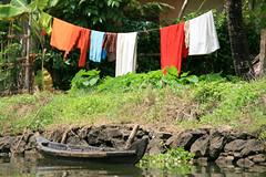 Washing (Riccy Wings) Tags: travel india water traditional kerala washing backwaters