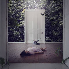 bedroom for curious souls (brookeshaden) Tags: leaves birds fairytale sleep flight dream jungle whimsical fineartphotography surrealphotography conceptualphotography brookeshaden