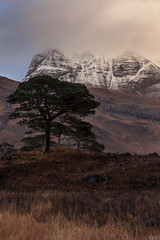 Slioch (KennethVerburg.nl) Tags: uk greatbritain mountain berg pine landscape scotland scot 2012 maree landschap lochmaree slioch torridon schotland scotspine verenigdkoninkrijk