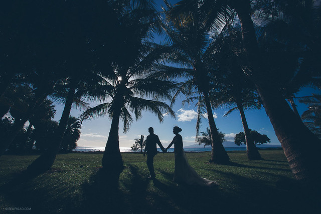 Diana & Armando / Olowalu Plantation House Wedding