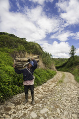 Back From Work (syukaery) Tags: people man indonesia nikon scenery 20mm westjava sukabumi teaplantation humaninterest citalahab halimun d700 bedeng