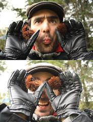 Ouriçadas (LetsLetsLets) Tags: portugal gloves dezembro 2012 marrons luvas sãopedrodosul gants castanhas ouriços cashmira