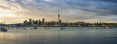 Panoramic view of Auckland (: : T O N I : :) Tags: ocean city morning blue sea newzealand sky urban building tower water beautiful architecture modern port sunrise landscape boats harbor town office downtown sailing cityscape apartment bright harbour outdoor central landmark center auckland getty skytower metropolis yachts metropolitan gettyimages waitemata