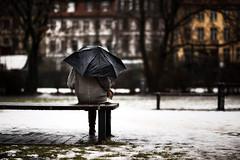 rainy days (green.pit) Tags: street streets berlin wet rain umbrella deutschland nikon europa bokeh f14 14 85mm dslr fx vivitar 85 mitte manualfocus walimex regen gettyimages d800 regenschirm samyang 2013 rokinon nikond800 pitgreenwood