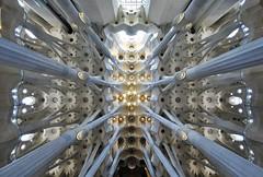 Gaudi's Masterpiece. La Sagrada Familia (Fotomondeo) Tags: barcelona light españa luz architecture spain arquitectura cathedral columns catedral catalonia gaudi catalunya lasagradafamilia cataluña columnas