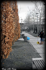 Yapraklar vs p  / Leaves vs Scavenger (CaNaLi2013) Tags: park old color leaves ve cleaning and vs splash ankara broom scavenger yapraklar temizlik sprge altnpark kabartma p rememberthatmomentlevel1